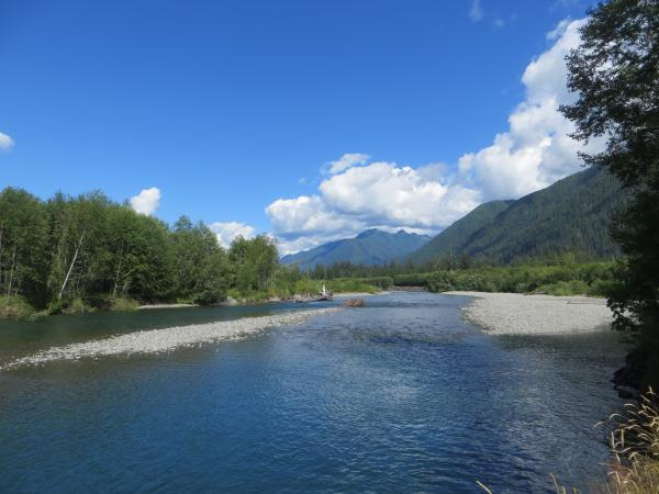 The Quinault River flowing from the Olympic Mountains