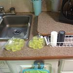 Yellow bagged squares are re-usable ice cubes.  Haven't used yet, but will on next trip.  Bought at Family Dollar.