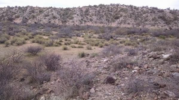 AZ Placer Claim near Congress, AZ