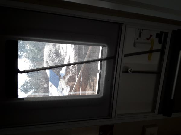 In order to work the new blind with the door closed, and the screen door in the way I added a plastic rod to the blind and it is long enough to reach the opening in the screen door that lets you access the door latch. So now I can raise and lower the blind with the door closed.
