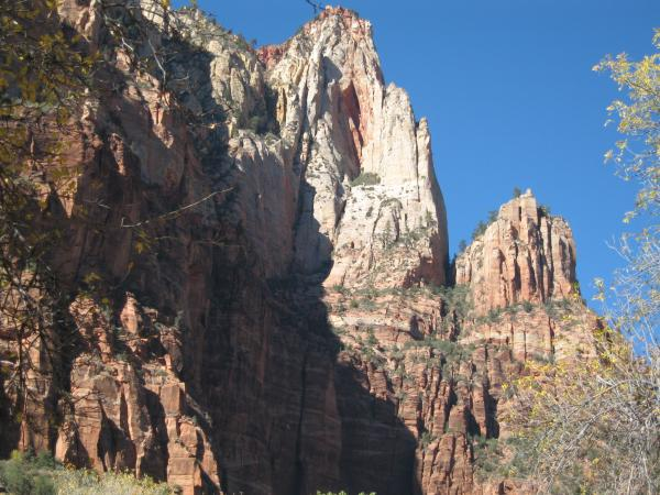More of Zions