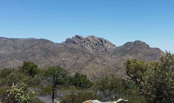 This rock formation is called Cochise Head.  This is the area where Cochise hid from the Army in the late 1800's