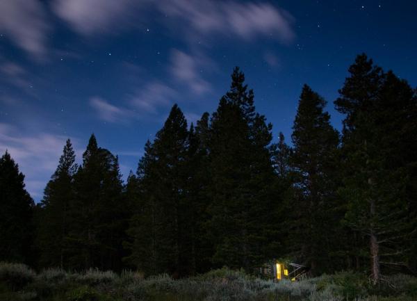 Toiyabe Natl. Forest, Calif., June 30, 2015